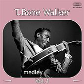 T-Bone Walker Medley 1: Travelin' Blues / I Miss You Baby /  Cold, Cold Feeling / Welcome Blues / Bye Bye Baby / I Got the Blues / You Don't Love Me / Here in the Dark by T-Bone Walker