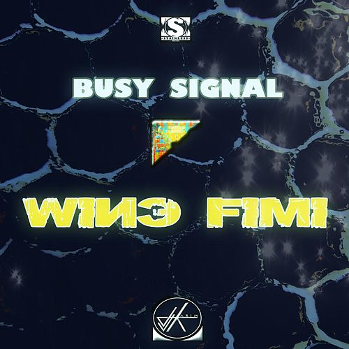 Wine Fimi by Busy Signal