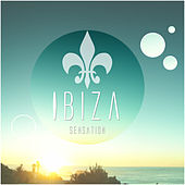 Ibiza Sensation by Various Artists