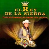 El Rey de la Sierra by El Tigrillo Palma