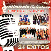 Puros Corridos Con Arpa, Vol. 1 by Various Artists