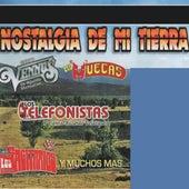 Nostalgia De Mi Tierra by Various Artists