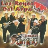 Los Reyes Del Arpa by Los Hermanos Jimenez