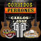 Corridos Perrones by Various Artists