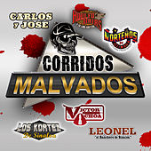 Corridos Malvados by Various Artists