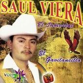 El Inmortal, Vol.4 by Saul Viera