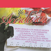 Yo Se Que Te Acordaras by Various Artists