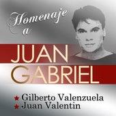 Homenaje a Juan Gabriel by Various Artists