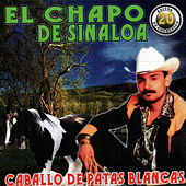 Caballo De Patas Blancas by El Chapo De Sinaloa