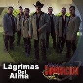 Lagrimas Del Alma by Grupo Innovacion