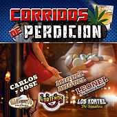 Corridos de Perdicion by Various Artists