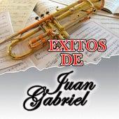 Exitos de Juan Gabriel by Juan Gabriel