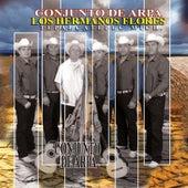 Conjunto De Arpa by Los Hermanos Flores
