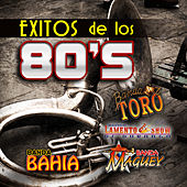Exitos de los 80's by Various Artists