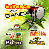 Exitasos con Banda by Various Artists