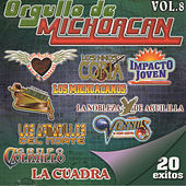 Orgullo De Michoacan, Vol. 8 by Various Artists