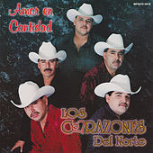 Amor En Cantidad by Los Corazones Del Norte