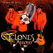 Tierra de Jefes by Los Ciclones del Arroyo