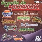Orgullo De Michoacan, Vol. 6 by Various Artists