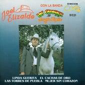 Linda Guerita, El Cachas De Oro, Las Torres De Puebla, Mujer Sin Corazon by Joel Elizalde