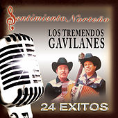 Sentimiento Norteno 24 Exitos by Los Tremendos Gavilanes