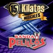 15 Kilates Musicales by Banda Pelillos