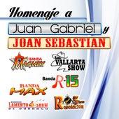 Homaje A Juan Gabriel y Joan Sebastian by Various Artists