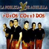 Puros Corridos by La Nobleza De Aguililla