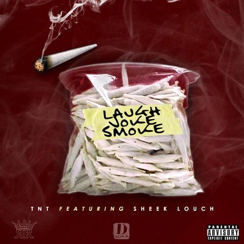 Laugh Joke Smoke (feat. Sheek Louch) by TNT