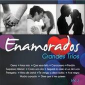 Grandes Tríos Volumen 2 by Various Artists