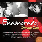 Grandes Tríos Volumen 1 by Various Artists