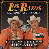 Puros Corridos Pesados by Various Artists