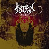 Consume To Contaminate by Rotten Sound