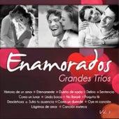 Grandes Tríos Volumen 3 by Various Artists