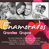 Exitos Grandes Grupos Volumen 3 by Various Artists