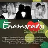 Grandes Tríos Volumen 4 by Various Artists