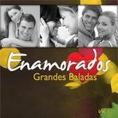 Grandes Baladas Volumen 1 by Various Artists