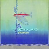 A Fishermans Friend von Pat Boone