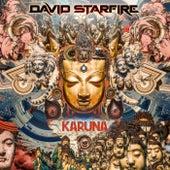 Karuna by Various Artists