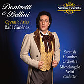 Donizetti & Bellini: Operatic Arias by Raúl Giménez
