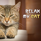 Relax My Cat - Soothing Music for Cats and Pets at Home Alone, Pet & Dog Relaxation by Pet Music World