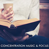 Concentration Music & Focus – Instrumental Music for Studying to Improve Memory & Study Skills, Music Therapy as Brain Food for Concentration by Concentration Music Ensemble
