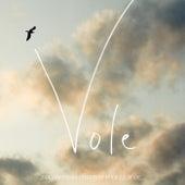 Vole (2 générations chantent pour la 3ème) - Single by Alain Souchon
