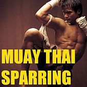 Muay Thai Sparring by Various Artists