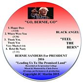 Go, Bernie, Go by Black Angel