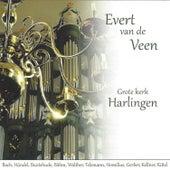 Evert van de Veen op het Hinsz Orgel by Evert van de Veen