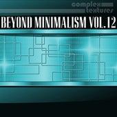 Beyond Minimalism, Vol. 12 by Various Artists