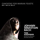 Bach: Cantatas for Marian Feasts by Ton Koopman
