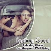 Feeling Good: Classical Music - Relaxing Pieces for Sleep and Well Being by Various Artists