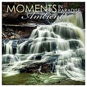 Moments in Paradise: Ambient by Various Artists